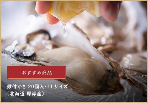 おすすめギフト商品 厚岸産 殻付かき(LLサイズ20個)6,999円(税込)