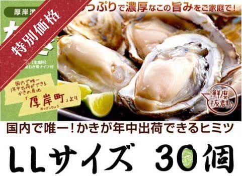 殻付かき 30個入・LLサイズ(北海道 厚岸産)