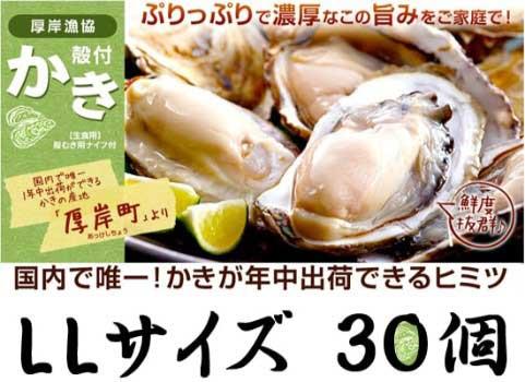 厚岸産 殻付かき(LLサイズ30個)