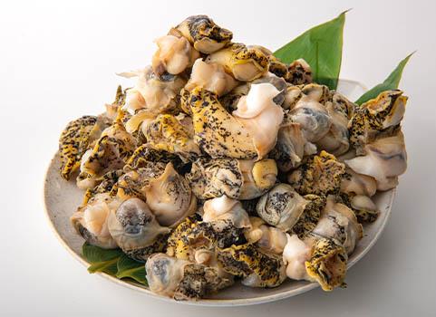 煮つぶ 1kg(北海道産・灯台つぶ)