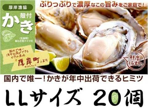 殻付かき 20個入・LLサイズ(北海道 厚岸産)