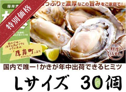 殻付かき 30個入・Lサイズ(北海道 厚岸産)