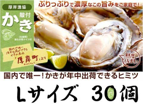 厚岸産 殻付かき(Lサイズ30個)