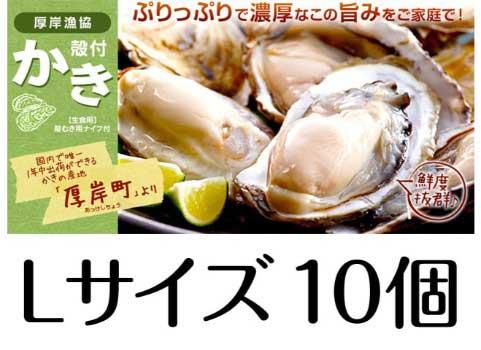 厚岸産 殻付かき(Lサイズ10個)