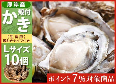 殻付かき 10個入・Lサイズ(北海道 厚岸産)【お中元ギフト】