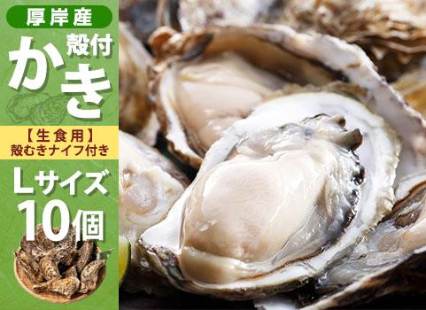 殻付かき 10個入・Lサイズ(北海道 厚岸産)