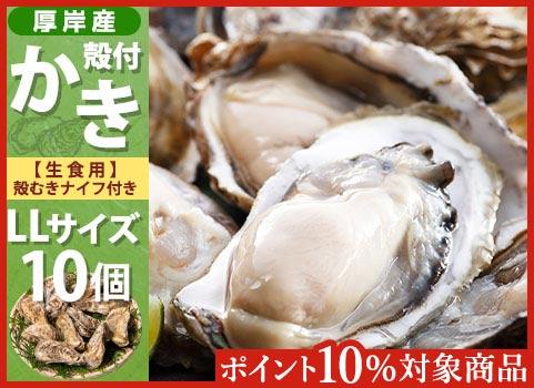 殻付かき 10個入・LLサイズ(北海道 厚岸産)【お中元ギフト】
