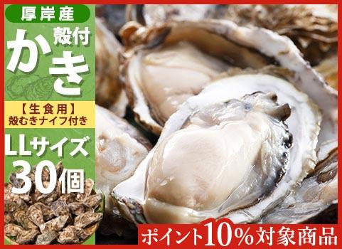殻付かき 30個入・LLサイズ(北海道 厚岸産)【お中元ギフト】