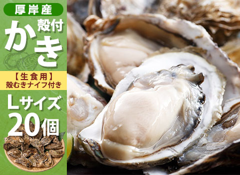 殻付かき 20個入・Lサイズ(北海道 厚岸産)