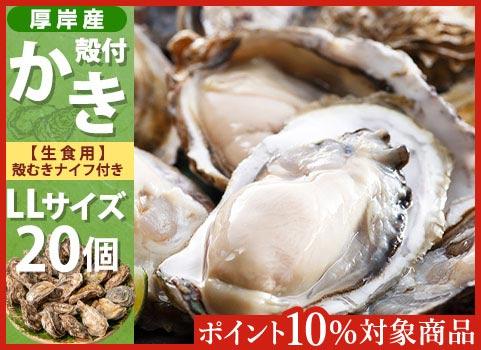 殻付かき 20個入・LLサイズ(北海道 厚岸産)【お中元ギフト】
