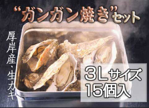 <厚岸産>殻付きカキ「ガンガン焼き」セット 3Lサイズ×15個