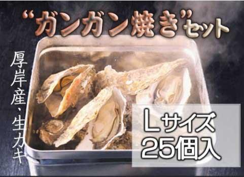 殻付かき「ガンガン焼き」セット 25個入・Lサイズ(北海道 厚岸産)
