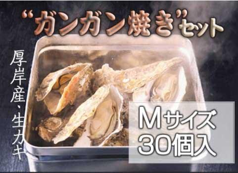 殻付かき「ガンガン焼き」セット 30個入・Mサイズ(北海道 厚岸産)