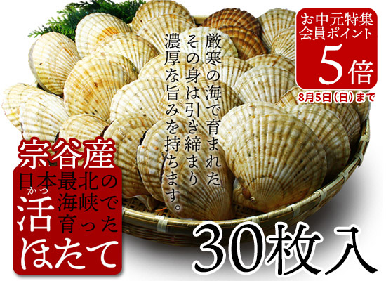 秋鮭塩筋子 500g