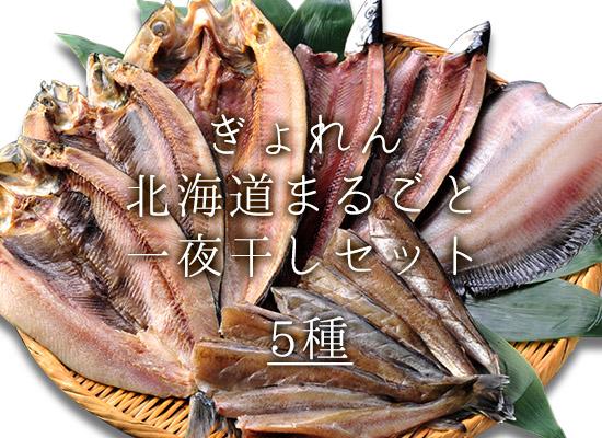 ぎょれん北海道まるごと一夜干セット(5種)