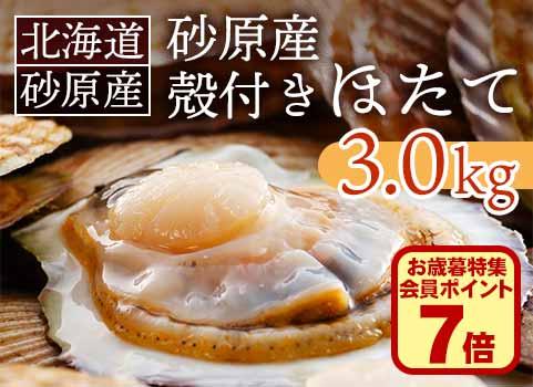 北海道 砂原産殻付きほたて 3kg(12~15枚)