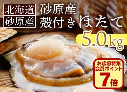 北海道 砂原産殻付きほたて 5kg(20~25枚)