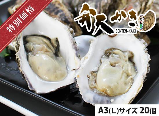 弁天かき 20個入【A3(L)サイズ】(北海道 厚岸産・殻付き)