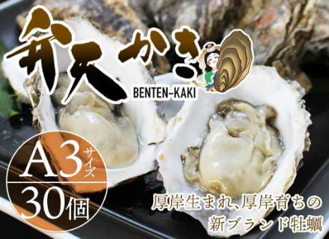 【厚岸新ブランド牡蠣】弁天かき(A-3サイズ)30個入