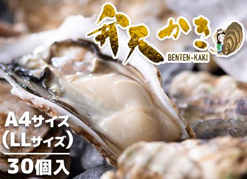【厚岸新ブランド牡蠣】弁天かき(LLサイズ)30個入