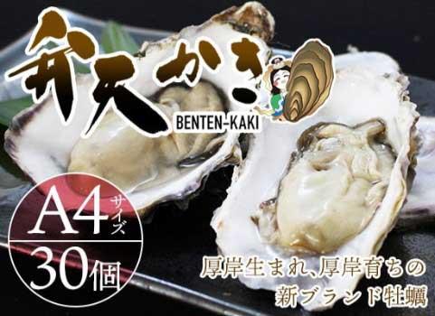【厚岸新ブランド牡蠣】弁天かき(A-4サイズ)30個入