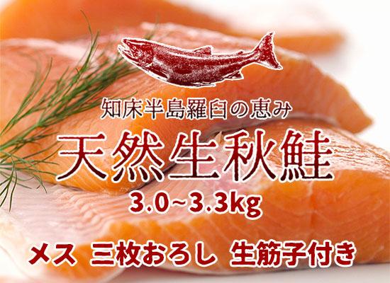 羅臼産 天然生秋鮭【3.0~3.3kg・メス・三枚おろし】