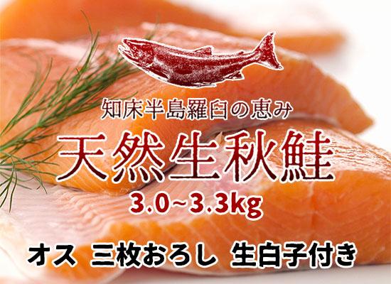 羅臼産 天然生秋鮭【3.0~3.3kg・オス・三枚おろし】