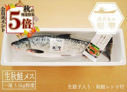 漁吉丸の銀聖生秋鮭(メス・3.5kg)