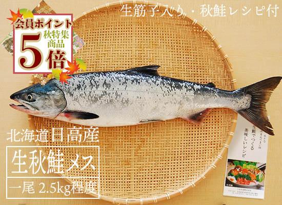 【9月20日頃から出荷開始予定】日高産 生秋鮭(メス・2.5kg)
