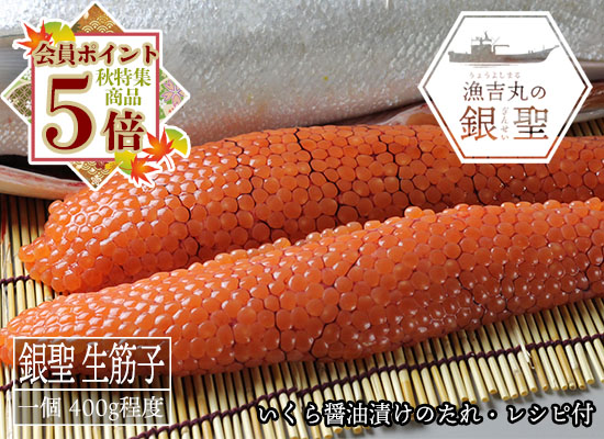 【9月20日頃から出荷開始予定】漁吉丸の銀聖 生筋子