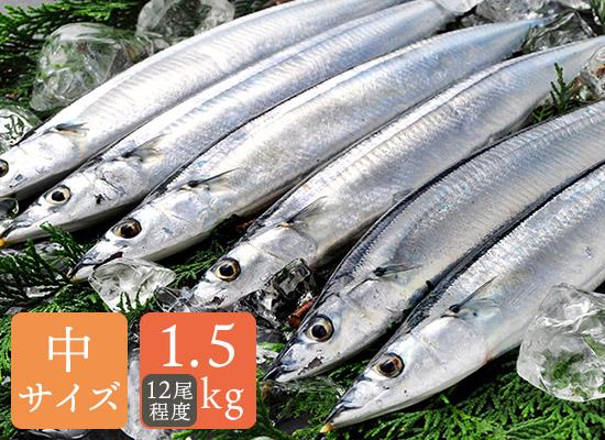 道東産鮮さんま1.5kg(12尾程)