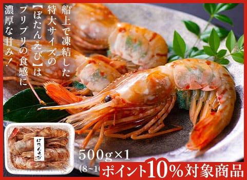 刺身用 特大ボタンえび(500g)【お中元ギフト】