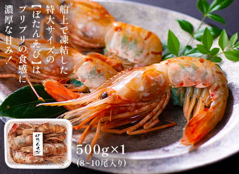 特大ぼたんえび 500g(刺身用・子持ち)