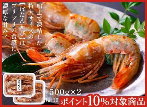 刺身用 特大ボタンえび(500g×2)【お中元ギフト】