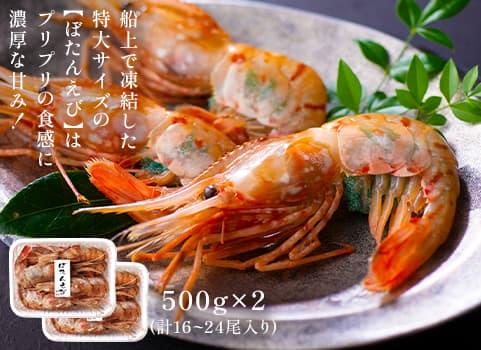 特大ぼたんえび 500g×2(刺身用・子持ち)