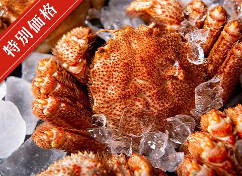 浜ゆで毛がに 800g×1尾(北海道 稚内産・ボイル冷凍)