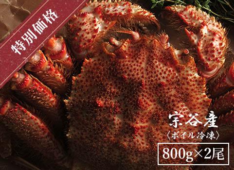 【3月中出荷限定】浜ゆで毛がに 800g×2尾(北海道 宗谷産・ボイル冷凍)