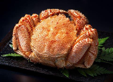 浜ゆで毛がに 1.0kg×1尾(北海道 宗谷産・ボイル冷凍)
