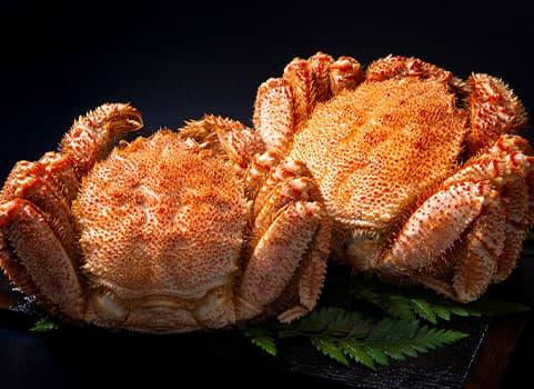 浜ゆで毛がに 1.0kg×2尾(北海道 宗谷産・ボイル冷凍)