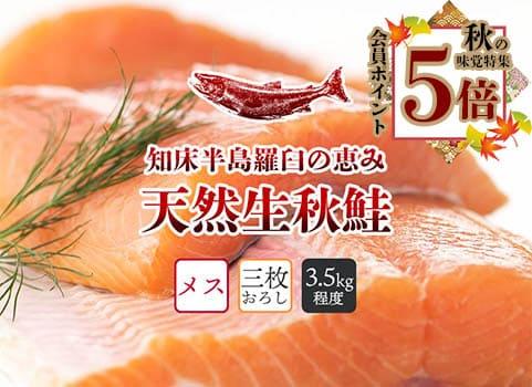 羅臼産 天然生秋鮭【3.5kg程度・メス・3枚おろし】