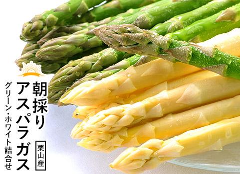 朝採りアスパラガス詰合せ グリーン・ホワイト(北海道 栗山産)