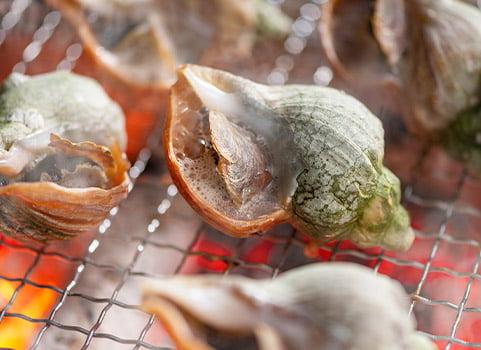 「手間いらず」の青つぶ貝 2kg・Lサイズ(北海道産)