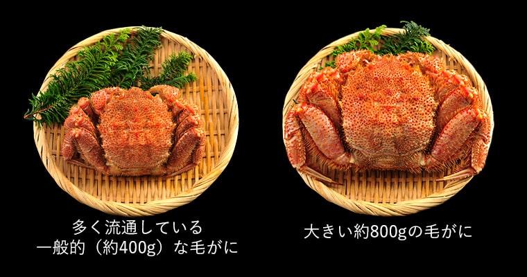 ※画像は400gと800gの比較です。