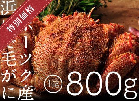 浜ゆで毛がに 800g×1尾(北海道 オホーツク産・ボイル冷凍)