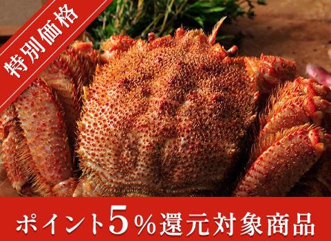 浜ゆで毛がに 800g×1尾(北海道 オホーツク産・ボイル冷凍)【お中元ギフト】