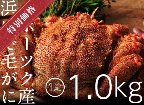 浜ゆで毛がに 1kg×1尾(北海道 オホーツク産・ボイル冷凍)