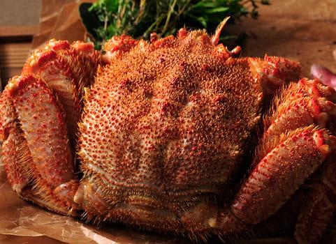 オホーツク産浜ゆで毛がに1kg×1尾(ボイル冷凍)