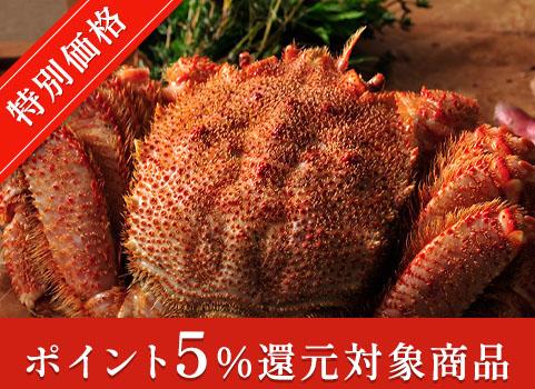 浜ゆで毛がに 1kg×1尾(北海道 オホーツク産・ボイル冷凍)【お中元ギフト】