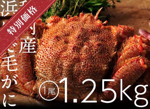 【販売終了】浜ゆで毛がに 1.25kg×1尾(北海道 稚内産・ボイル冷凍)