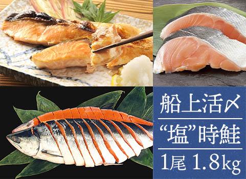 """日高産船上活〆""""塩""""時鮭(1尾1.8kg)"""